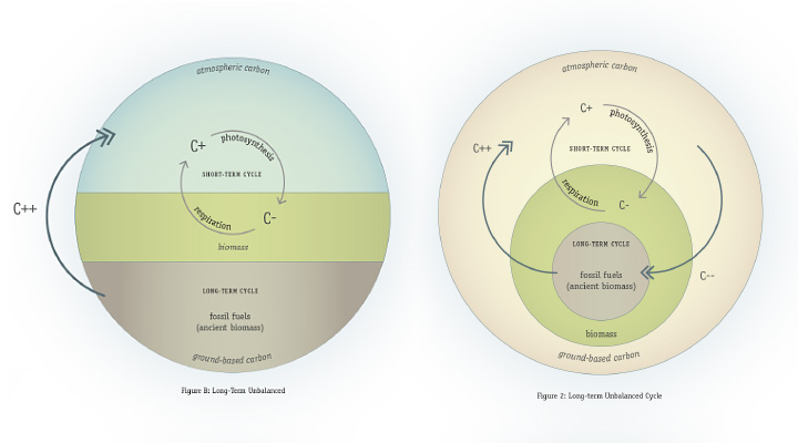 Carbon Cycle Diagrams